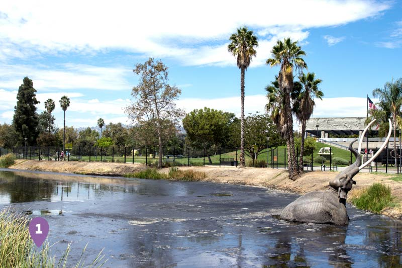 The Los Angeles Tar Pits