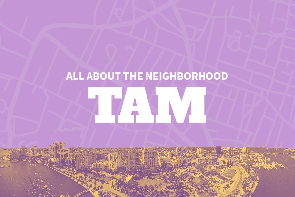 An Insider's Guide to Tampa Neighborhoods