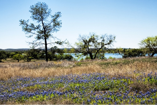 Report Names Best Locations for Buying Land in North Texas