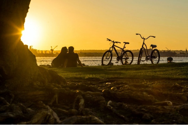 Ride Your Bike Through These 6 San Diego Neighborhoods