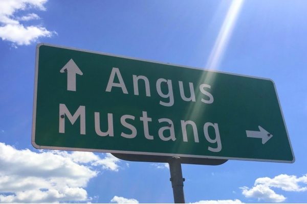 Buy the Tiny Texas Town of Mustang for $4 Million