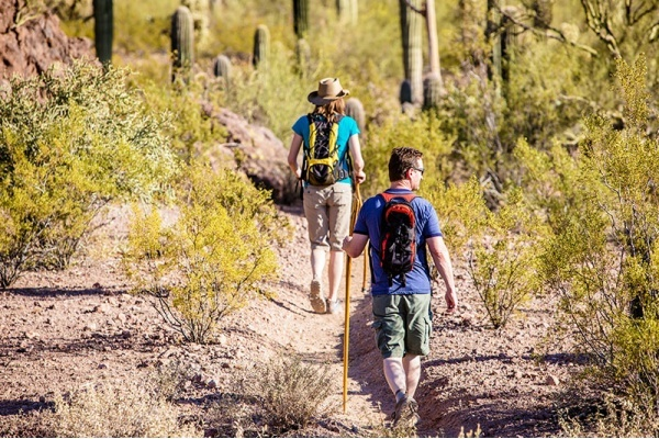 Title photo - 4 Best Tucson Neighborhoods for a Staycation