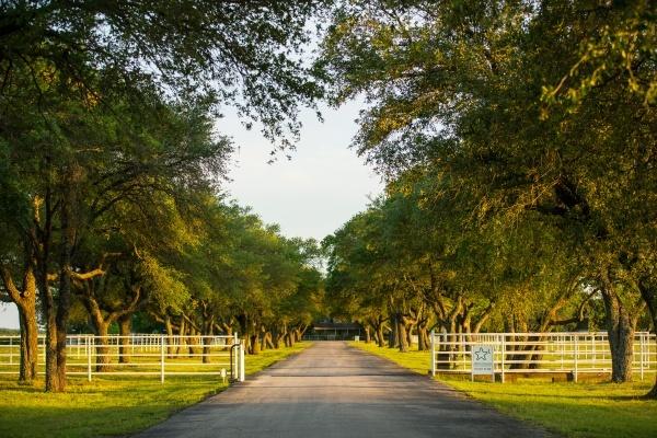 Historic 4,820-Acre Wynne Ranch for Sale Near Kaufman