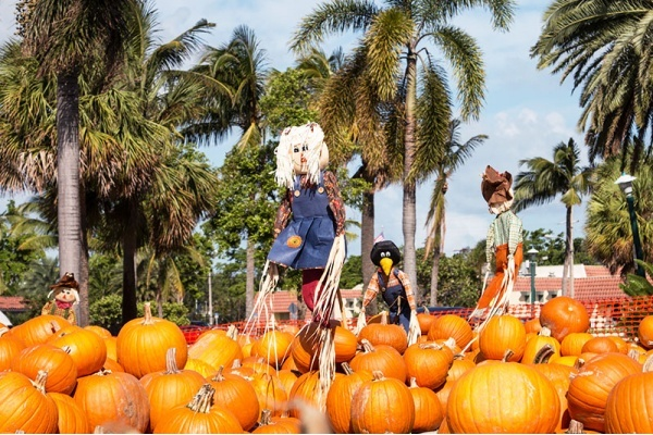 Best Miami Neighborhoods to Celebrate Halloween