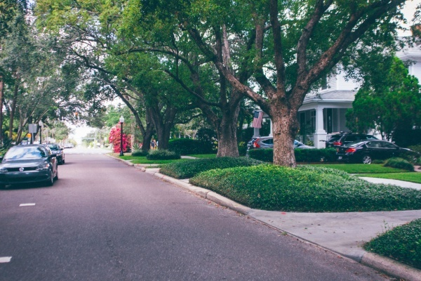 Meet My Neighborhood: Hyde Park, Tampa