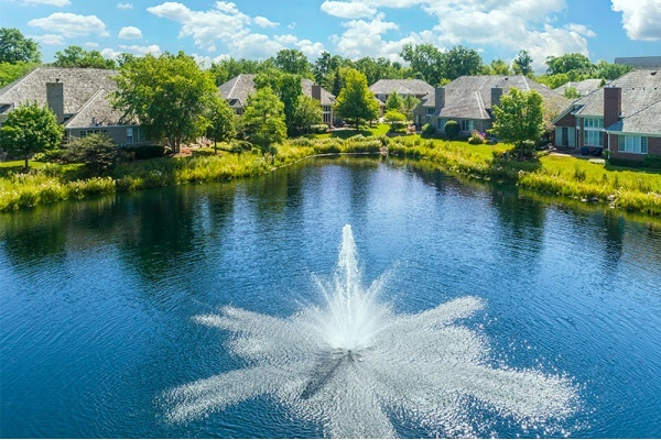 Where to Find a Home in Dupage County, Illinois' Priciest Area