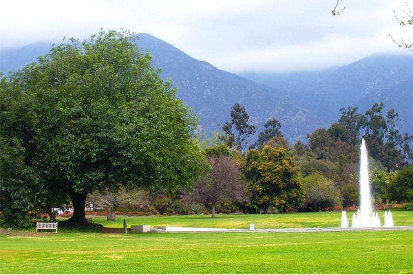 5 Reasons to Live in Arcadia in San Gabriel Valley
