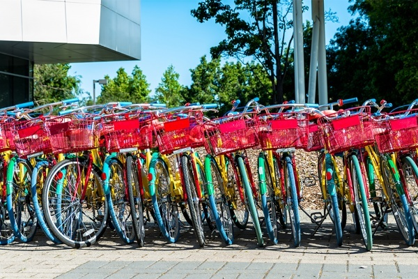 Google's Employee-Only Bikes Are Turning Up in Weird Places Around Mountain View