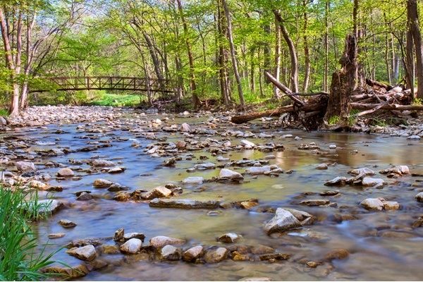 7 Places to Embrace the Great Outdoors in the Chicago Suburbs