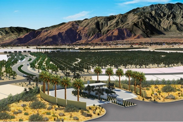 Miralon Combines 'Agrihood' Trend With Luxury Living in Palm Springs