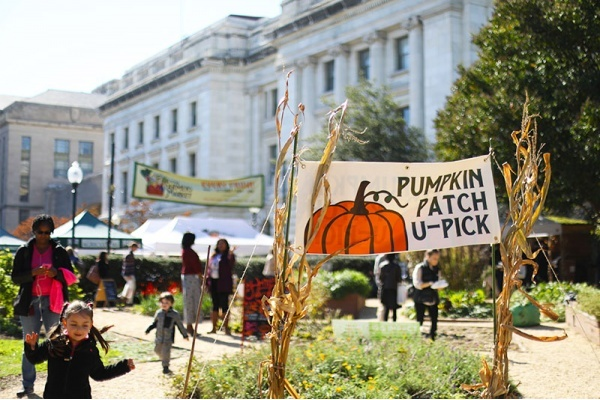 The Best Neighborhoods in the D.C. Area for Halloween