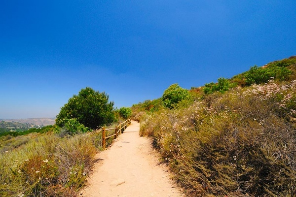 6 San Diego Parks With Great Walking Trails