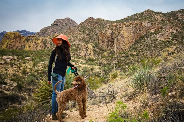 5 Reasons Tucson is a Great City for Dog Owners