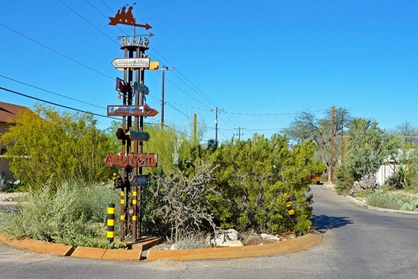 Tucson 'Neighborhood Foresters' Keeping Streets Shaded, Promoting Green Infrastructure