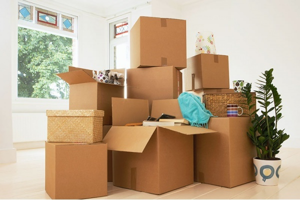 Best Local Moving Companies in Culver City