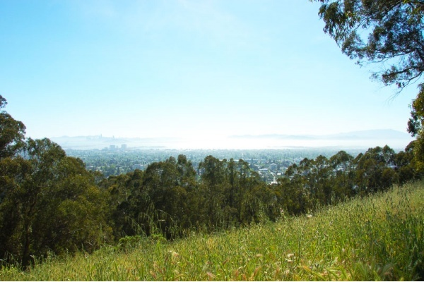 Best Hiking Destinations in Berkeley