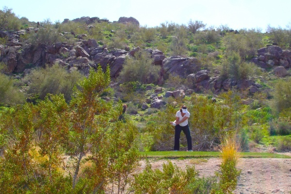 Maracay Homes Turning Former Phoenix Golf Course Into Gated Community