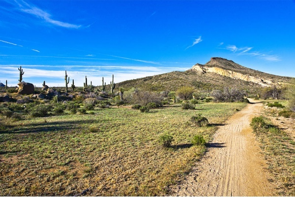 The Best Neighborhood Hiking Trails in Scottsdale