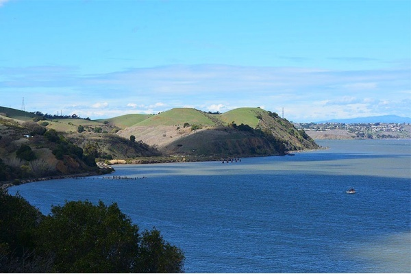 Best Hiking and Walking Trails Near Vallejo
