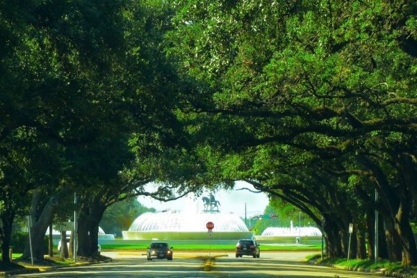 Title photo - Houston's Montrose Neighborhood Getting Greener Thanks to Grant