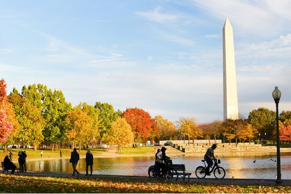 A Neighborhood Guide to Enjoying Fall in D.C.