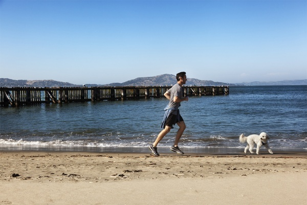 The Bay Area's Most Popular Running & Biking Routes