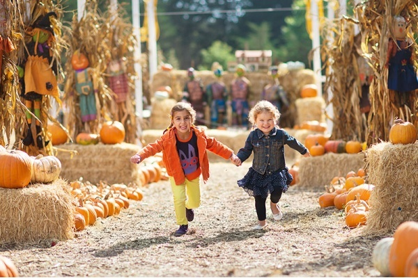 Title photo - Find Fun Halloween Events in These Phoenix Neighborhoods