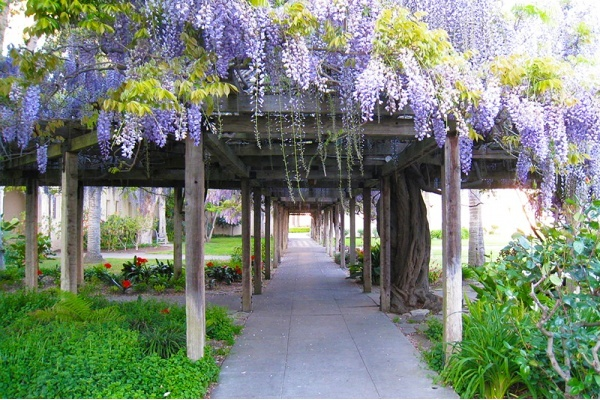 5 Ways to Enjoy Spring in Santa Clara