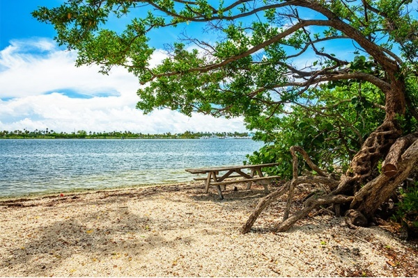 Miami Neighborhoods with the Best Parks