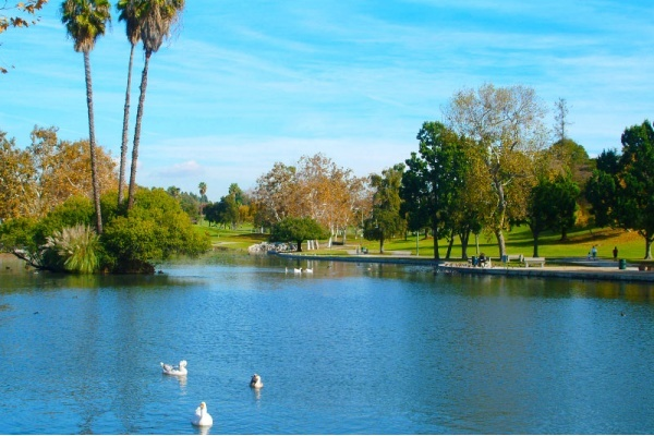 5 Reasons to Move to La Mirada