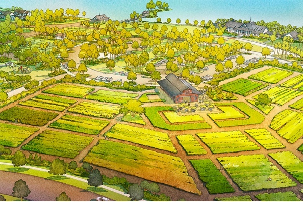 Arden 'Agrihood' Set to Open Soon in Wellington
