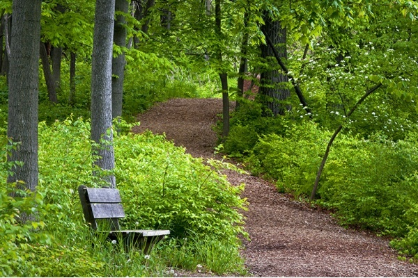 6 Trails in Lockport to Hike, Walk, and Bike This Spring