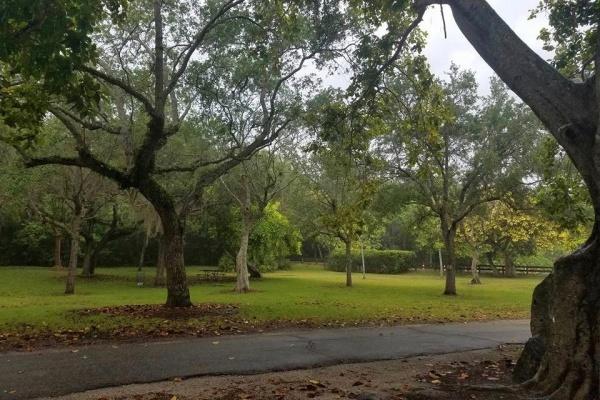 $415,000 Land Sale Aids Coral Gables Park Expansion