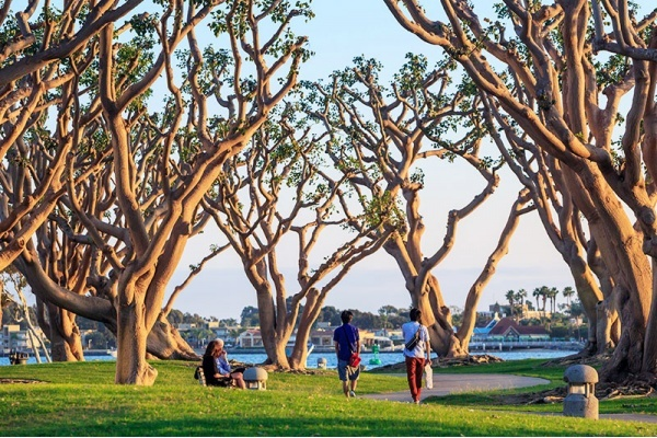 5 Walkable Neighborhoods in San Diego