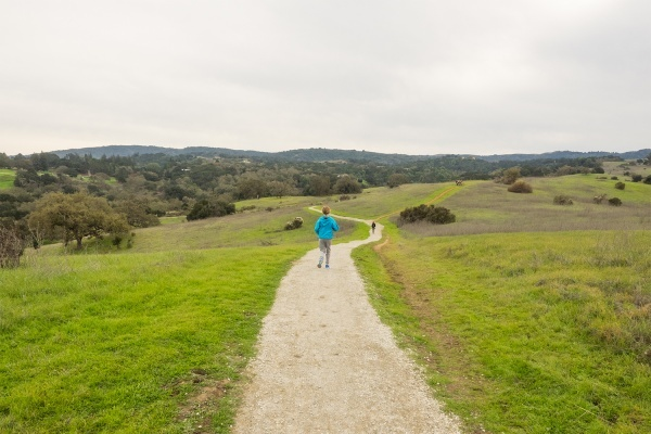 6 Palo Alto Hiking Trails with Spectacular Views