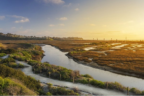 Conservancy Adds 77 Acres to San Elijo Lagoon Ecological Reserve