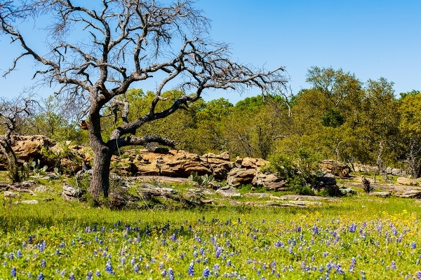 Flower Mound Planners Oppose Rezoning for Serenity Development