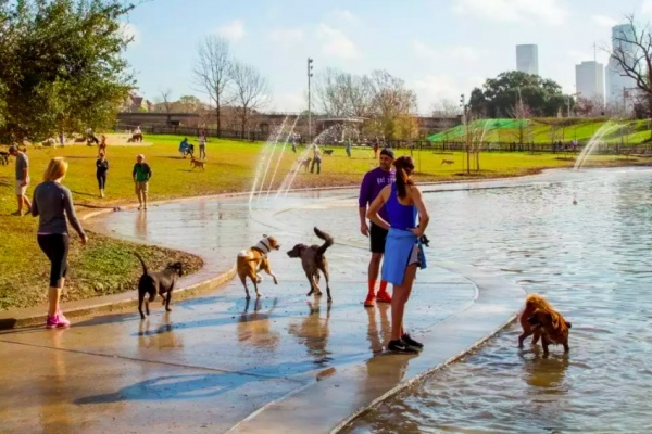 Best Dog-Friendly Businesses in Houston