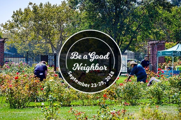 4 Neighborhoods in San Francisco for Getting Involved