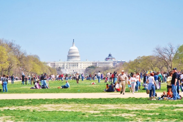 How to Make Friends in a New City: D.C. Edition