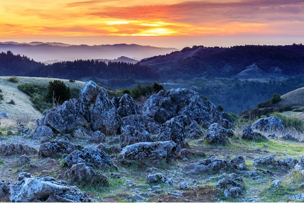 5 Places for Nature Lovers in Portola Valley