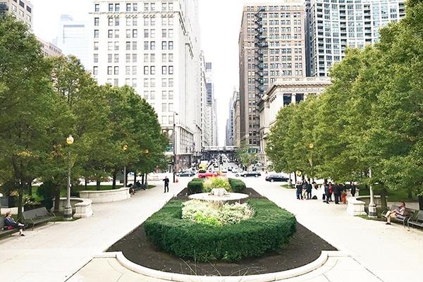 Meet My Neighborhood: The Loop, Chicago