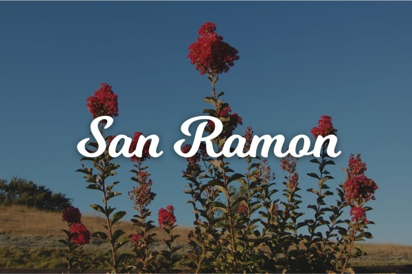 Suburban Spotlight: San Ramon