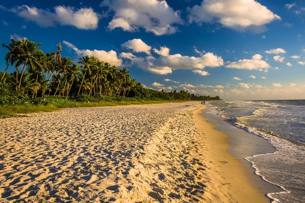 naples, Florida, Isles of Collier Preserve