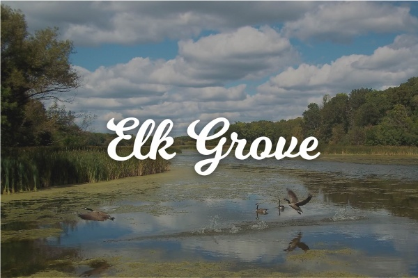 Suburban Spotlight: Elk Grove Village