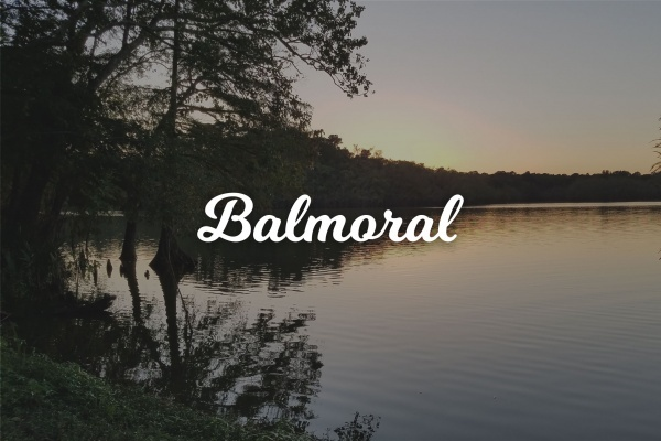 Community Spotlight: Balmoral