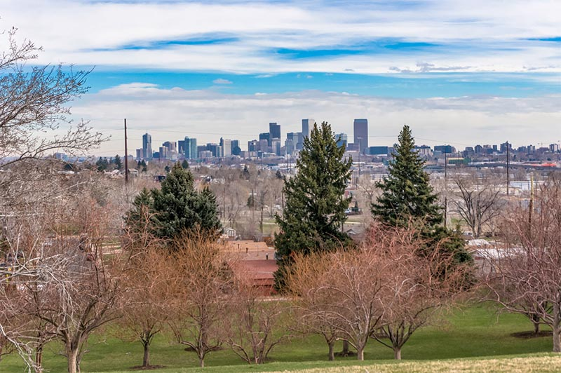 A view from a park that rises above the Denver skyline