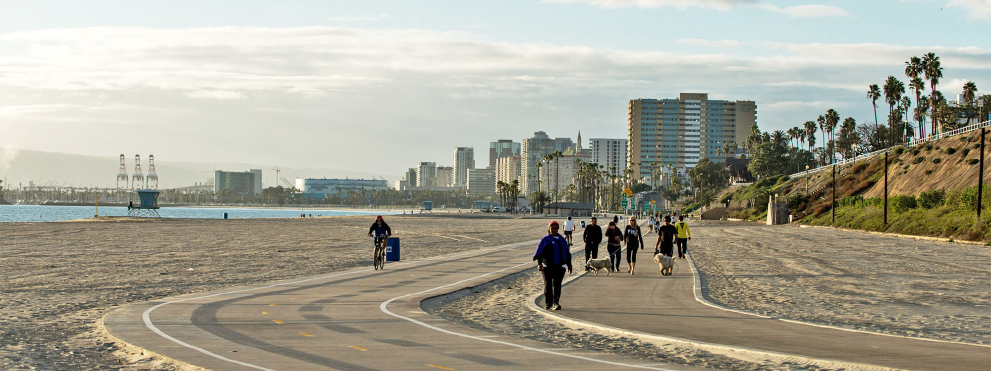What It's Like Living in Downtown Long Beach, California