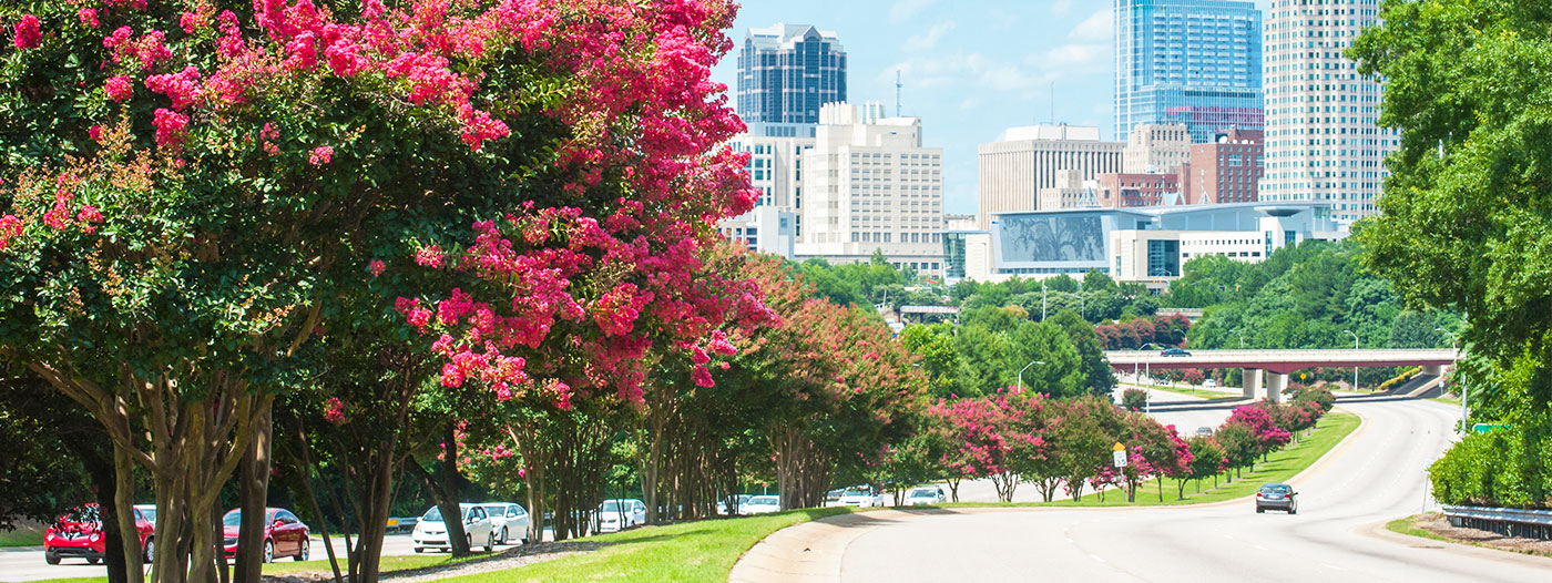 7 Suburban Cities with Easy Commutes to Raleigh