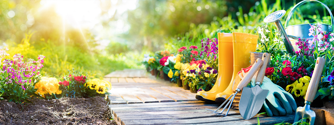 Getting Started on Your Garden